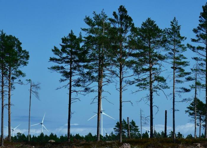 wind-4791332_1920
